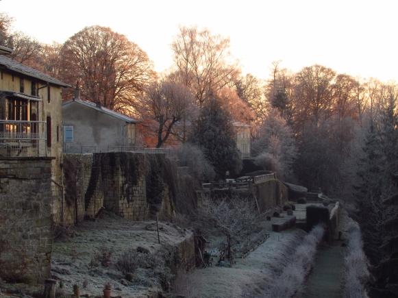 Winter frost 122