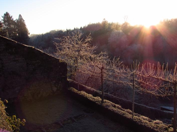 Winter frost 316