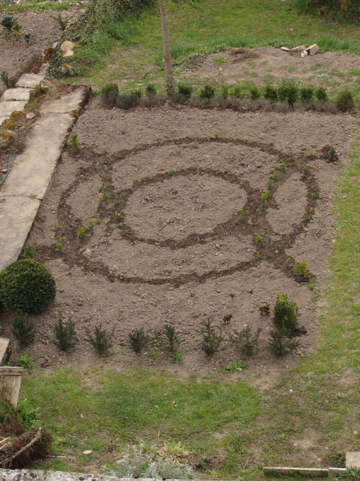 Birth of a knot garden 029
