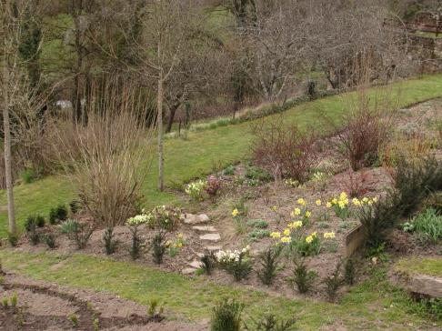 Birth of a knot garden 031
