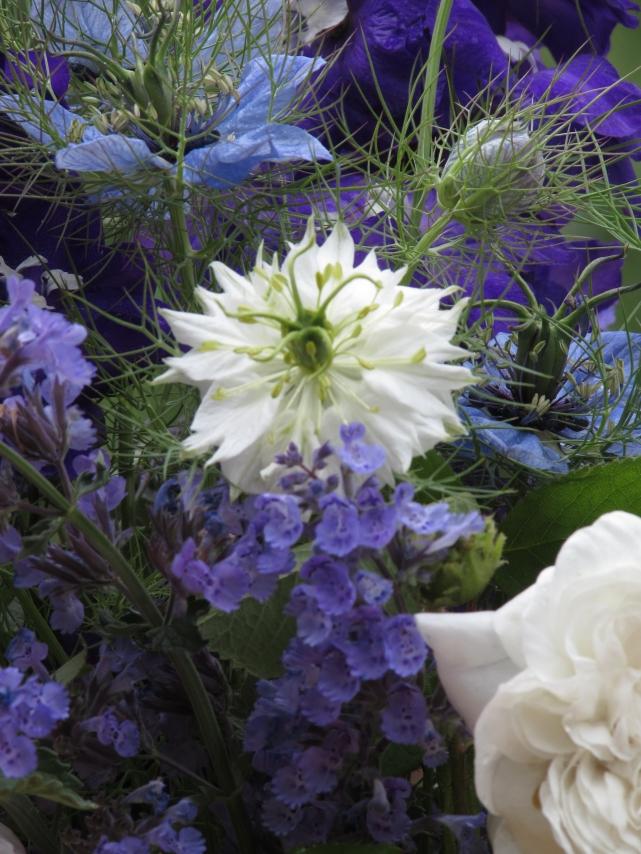 In a vase 005