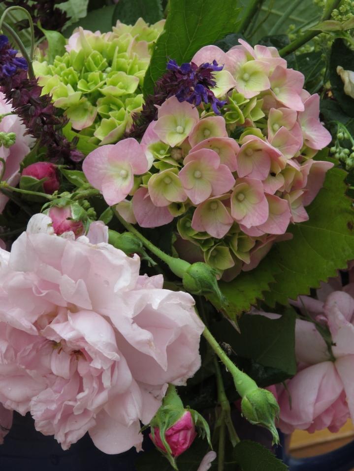 Vase on Monday. 15 June 026