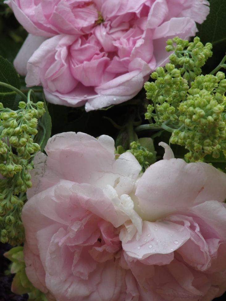 Vase on Monday. 15 June 046