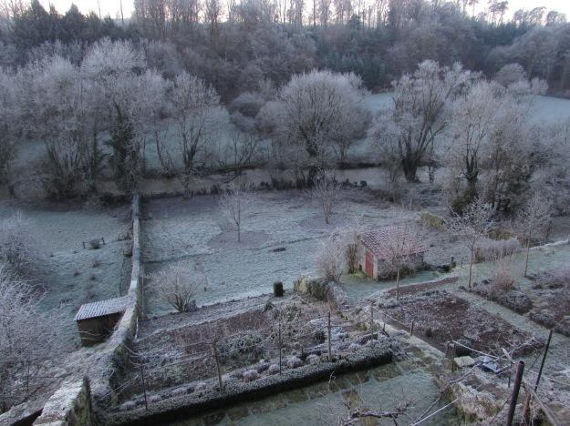 Winter frost 052