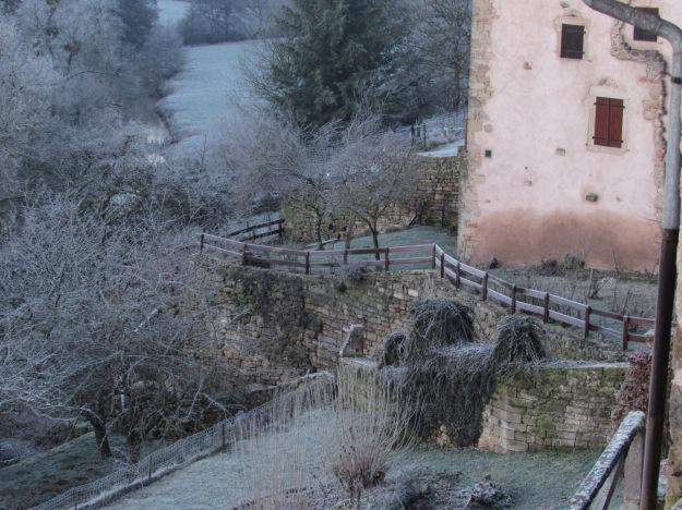 Winter frost 076