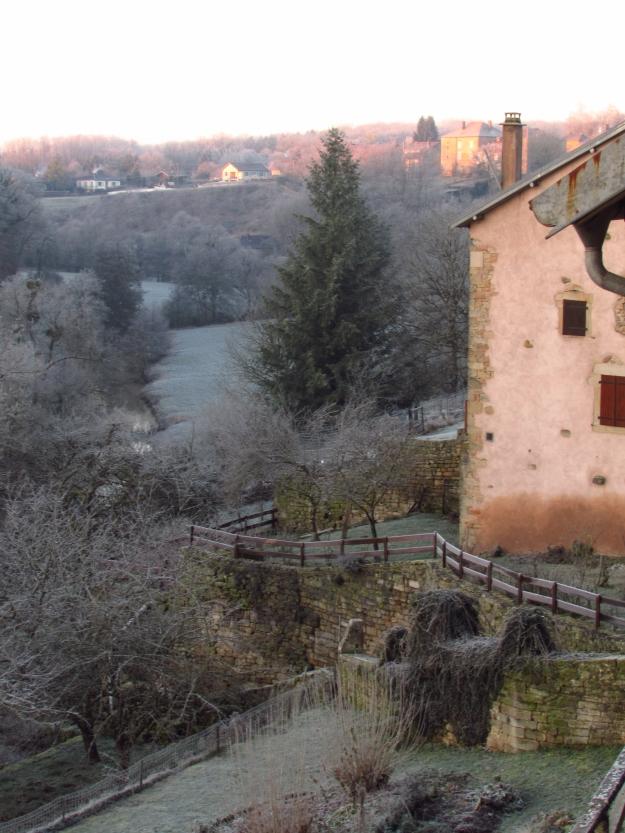 Winter frost 094