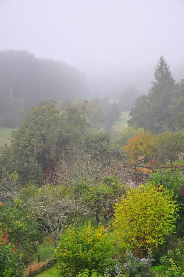 vivid-autumn-004