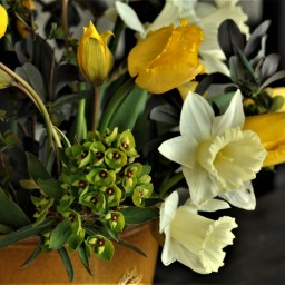 In a vase on Monday. 6 April 2020